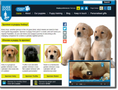 charities gsd memorials guide dogs for the blind rehoming scheme For the Blind Guide Dog Foundation
